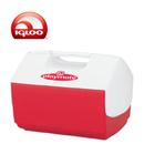 Igloo Coolboxes Personal Size